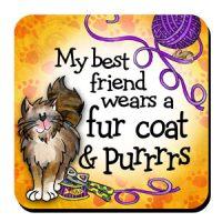 My best friends wears a fur coat & purrrrs (BF Cat) – Coaster