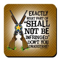 """Exactly what part of """"Shall Not Be Infringed"""" don't you understand? – Coaster"""